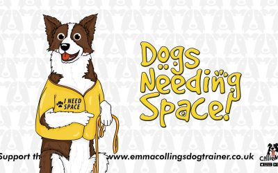 Space needed dogs – A true experience