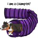 collie cartoon emoji agility
