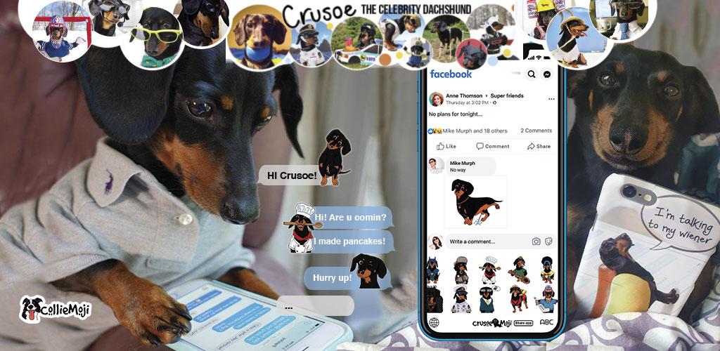 CrusoeMoji - Wiener dog emojis of Crusoe, the celebrity Dachshund
